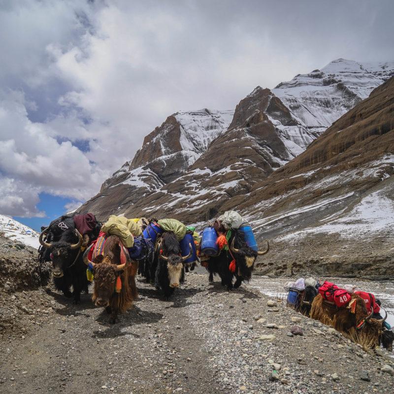 First day trek around Mount Kailash